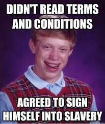 Terms and Conditions 2
