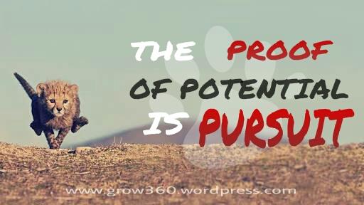Pursuit Image
